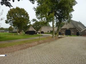 ridderinkhof